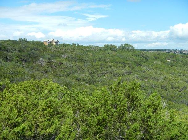 Travaasa Austin Texas Bluebonnet Room View