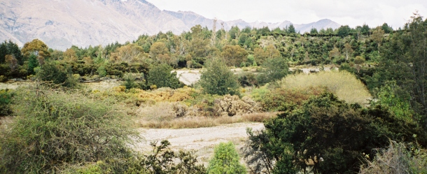 Frodo and Sam watched the Oliphants in The Lord of the Rings in what is actually a Queenstown campground