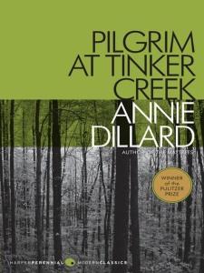 pilgrim at dinker creek by annie dillar
