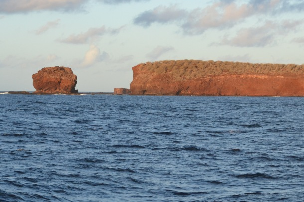 Lanai's dramatic coastline