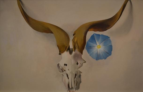 Ram's Head, Blue Morning Glory ~ 1938