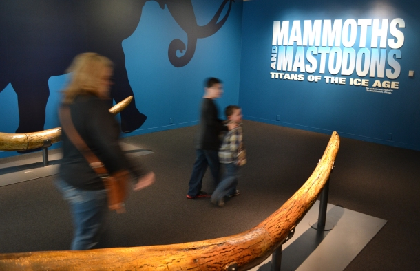Walking into Mammoths and Mastodons