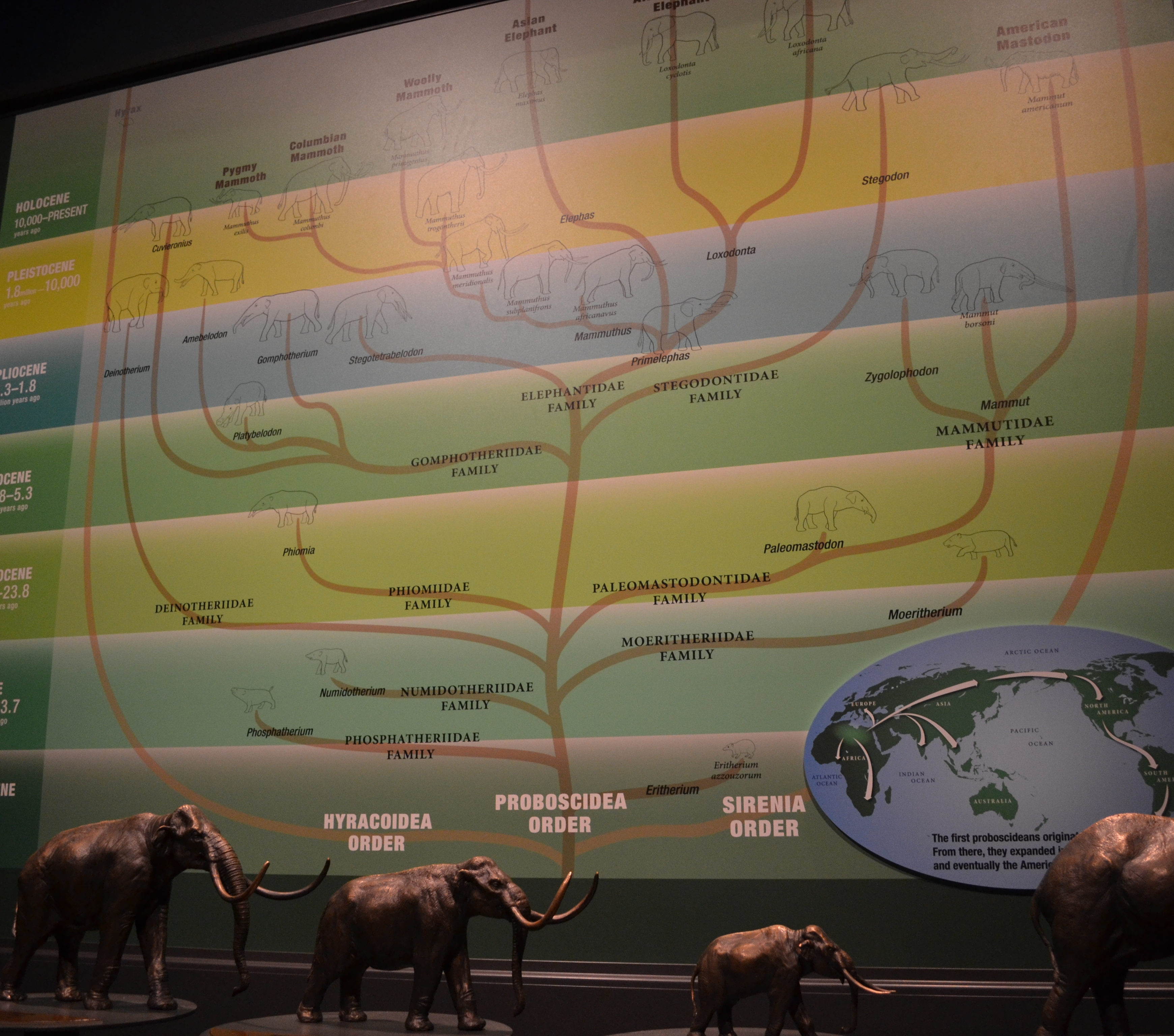 View From Denver Museum Of Science And Nature: Learning About Mammoths And Mastodons At The Denver Museum