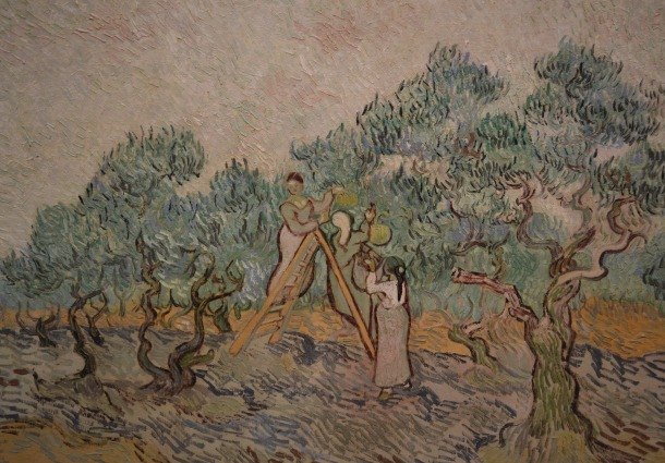 Van Gogh's The Olive Orchard, 1889