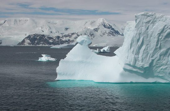 A rhino-like iceberg