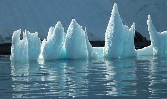 A thorny-like iceberg
