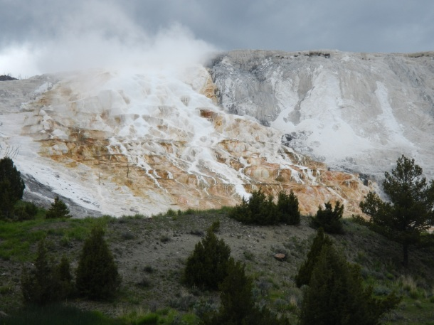 The Mammoth Hot Springs Terrances