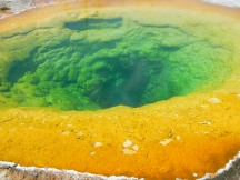 Yellowstone's Morning Glory Pool