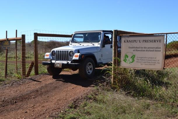 Driving into Lanai's Kanepu'u Preserve