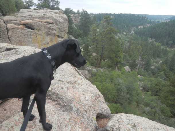 Anna stopping to enjoy Castlewood Canyon's rim views
