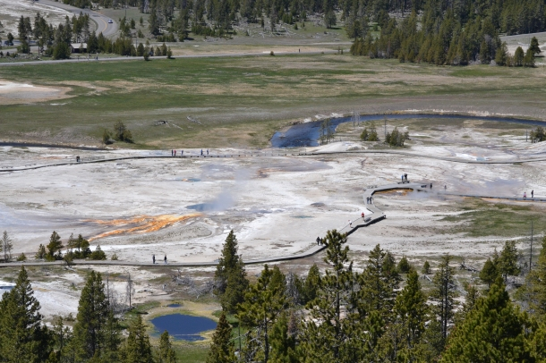 The view of the geyser basin around Old Faithful