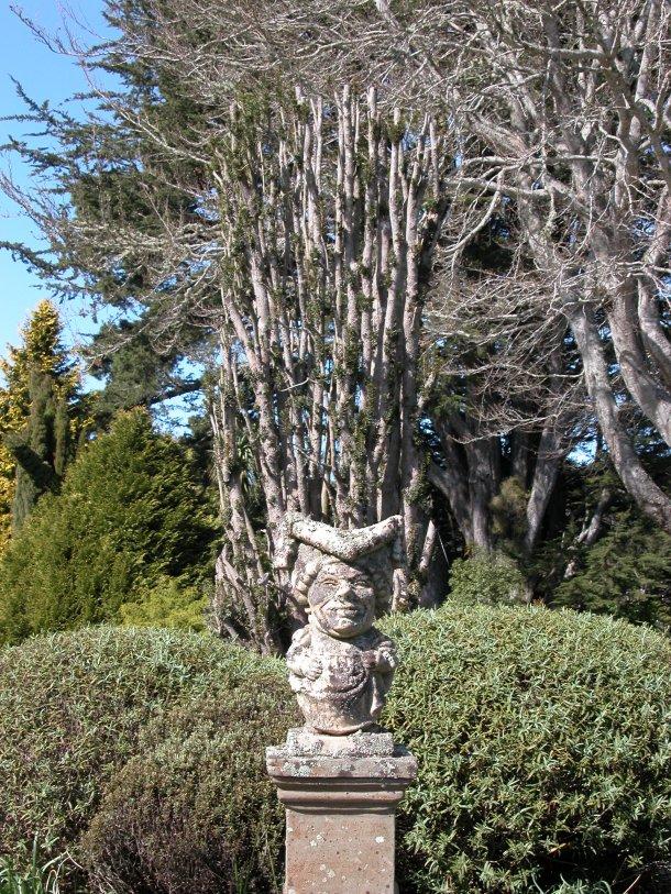 Larnach Castle's Queen of Hearts