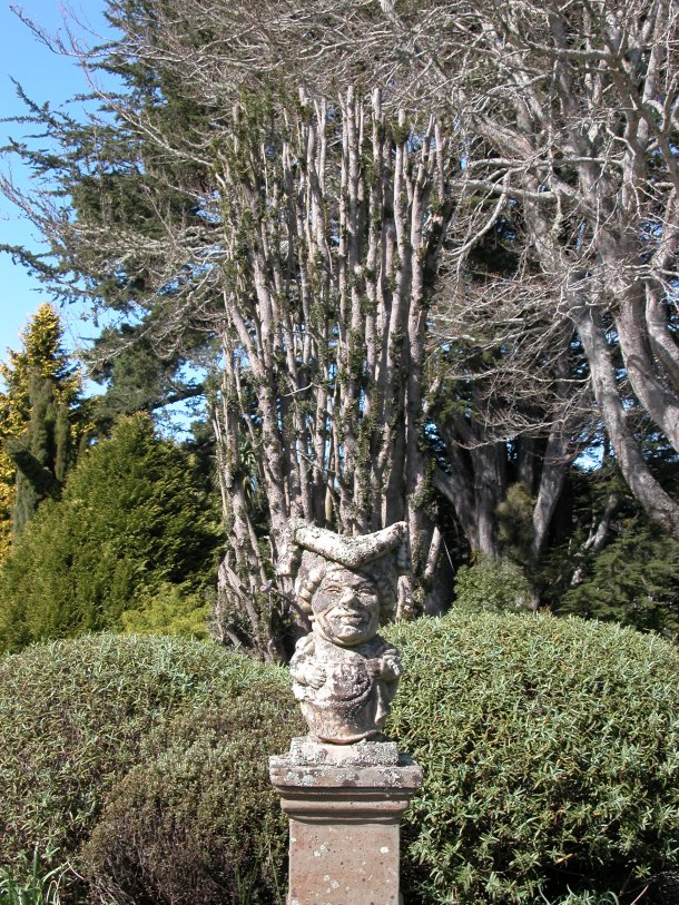 Larnach Castle's Queen of Hearts