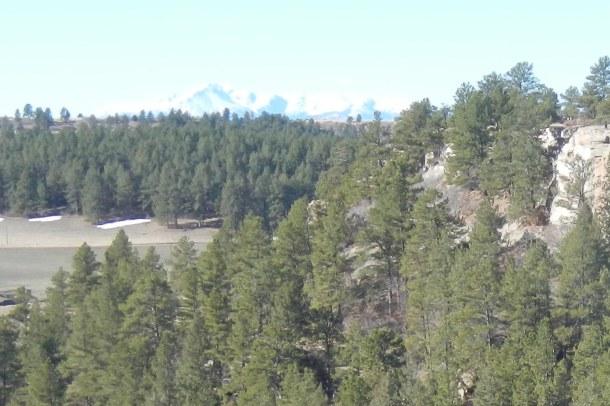 Pikes Peak beyond the trees