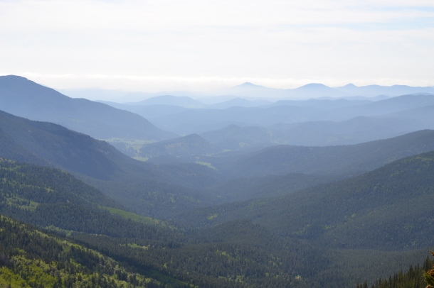 The view as we drive up Mt. Evans, a detour en route to Steamboat Springs